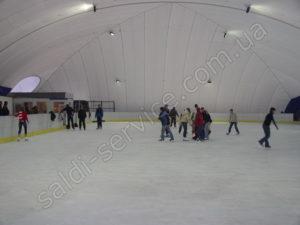 Penguin ice rink inside