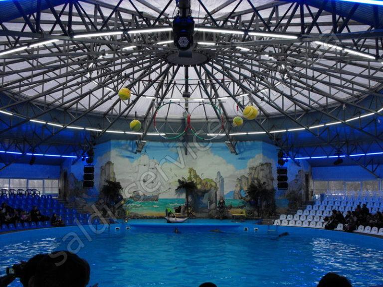 Дельфинарий «НЭМО» в Киеве и Донецке внутри